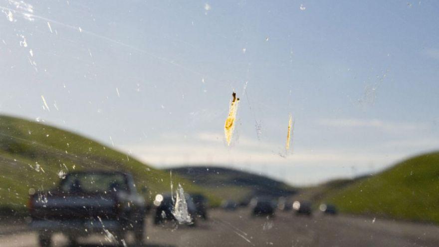 Ne felejts el nyári szélvédőmosóra váltani